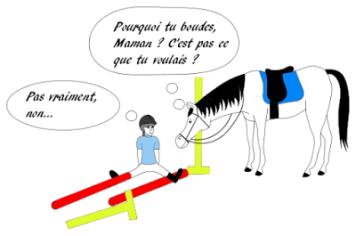 chute obstacle cso peur équitation